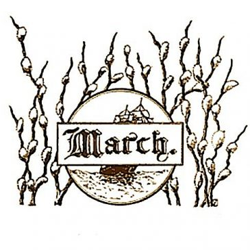 March Pussy Willow Label Clip Art